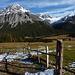 bei der Alp Buffalora