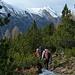 durch die ersten Föhren vor der Alp la Schera