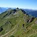 Auf schmalen Steigen in der steilen Südflanke des Schongütsch - Blick zurück über den Brienzergrat nach Westen.