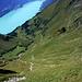 WOW ganz schön tief ! Von der der steilen Südflanke des Schongütsch kann man quasi fast in den Brienzer See spucken.
