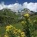 Biberacher Hütte und Hochkünzelspitze