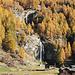 Tosende Bäche im Goldenen Herbst