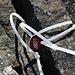 Bocktenhorn (3044m):<br />Eine merkwürdiges Schildchen ist sturmsicher an einem Stein auf dem Gipfelsteinmännchen angebracht, weiss jemand vielleicht was das zu bedeuten hat?