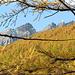 Blick über ein gelbes Meer zum Chistehorn