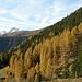 Herbststimmung beim Abstieg