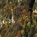 Farbiger Wald an der Flanke des Stegnone und der Cima Cioltro.  Auf den Felsabsätzen waren früher Alpweiden.