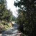 Aufstieg durchs Val Chamuera