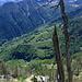 Auf dem Abstieg, Blick ins Valle Cortino