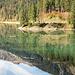 Spiegelung im Obersee II