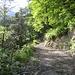 Fahrweg über dem Erzbach