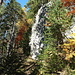 Durch bunten Herbstwald geht es steil hinauf nach Waldiberg.