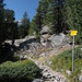 Weg zur Bovalhütte im unteren Abschnitt