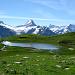 Petit lac sur fond de Schreckhorn