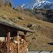 Bachalpji, da laufen wir auch manchmal im Winter  hin