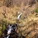 Nonostante la stagione e il fatto di trovarsi non molto sotto la cresta, l'acqua è abbondante su tutto il percorso.