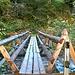 Brücke Clemgia-Schlucht