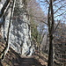 Unterwegs zwischen Scharten und Risi - Mittlerweile führt der Weg nun durch Wald, entlang an den teilweise steilen und felsigen, südwestlichen Flanken des Mittelbergs.