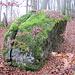 Um diesen Felsblock, den Glockenstein, rankt sich eine alte Mär` ...[http://www.adam-duingen.de/pottland/orte/duingen/sagen.htm Sagen und Erzählungen]