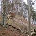 Steiler Abstieg an der Bergrutschwand oberhalb Brunkensen