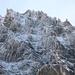 Westwand Arpelistock