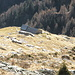 Alpe Erbea