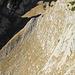 Diesen Schrofentrichter gilt es hart unter den Südwänden des Zehenspitz zu queren