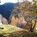 Blick auf die gegenüberliegende Talseite des Valle di Moleno