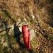 Soll ich mich nun sicherer fühlen, oder das Gegenteil?  Ueberall im Wald hat es Hydranten.