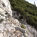 Kurze Kraxelei in etwas brüchigem Gestein ... als wir die Querung hinter uns haben, bemerken wir, daß diese Stelle eigentlich im jenseitigen Latschengestrüpp umgangen wird.