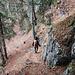 Steiler Waldpfad im Abstieg