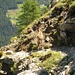 Der Steinbock weist uns während mehreren Minuten den Weg - ein treuer Weggenosse