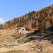 Saliamo  fino all' Alpe Fopascia