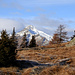 Pianoro attorno all' Alpe Fopascia, dove ammiriamo la grande sagoma del Pizzo Forno