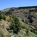 Im Aufstieg zwischen Puente Palo und Pico de Las Alegas - Der höchste Punkt des Bergrückens im Hintergrund ist der Pico de las Alegas (links, etwas verdeckt).