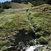 Im Abstieg zwischen Pico de Las Alegas und Puente Palo - Ausblick.