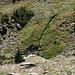 Im Abstieg zwischen Pico de Las Alegas und Puente Palo - Blick hinunter entlang der steilen Hängen westlich des Refugio del Cebollar zum Río Chico.