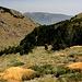 Im Abstieg zwischen Pico de Las Alegas und Puente Palo - Hier in der Nähe des Río Chico und Barranco de Cortes.