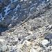 Abstieg über die Ostflanke(II, bis T6-)