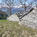 Alpe Bovarenchio