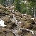 steil gings bergauf, leider auch sehr nass