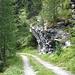 Gemütlicher Wanderweg durch den Bleikawald
