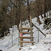 kleines Hindernis für  Schneeschuhläufer
