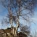 An der Jeřabina - Hier an den nordwestlich der Aussichtsplattform gelegenen Felsformationen.