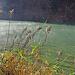 17. November: Herbstnebel über dem Wasser