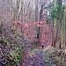 Abstieg vom Külf. Ich liebe solche uralten verwachsenen Waldwege, die oft nur noch in alten Karten eingezeichnet sind.