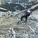 Abstieg zu unseren Bikes im Karwendeltal