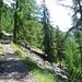 Der idyllische Aufstieg zur Bordierhütte über den Panoramaweg.