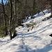 Aufstieg durch den tiefer werdenden Schnee