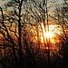 Sonnenuntergang beim Abstieg vom Hasenmatt I