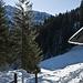Nach der Hütte beim Schopfberg, geht es im Wald wieder kurz steil bergauf
